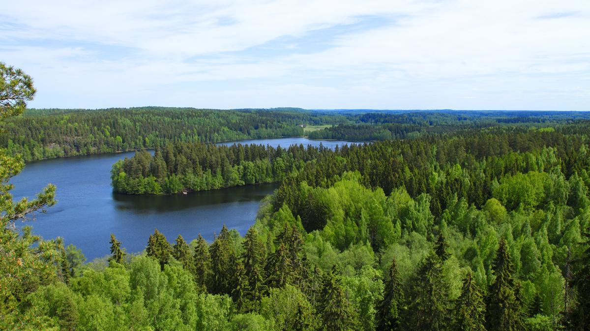 Valokuvaaja Timo Ahola - Luonto - 0021 (c) Valokuvaaja Timo Ahola
